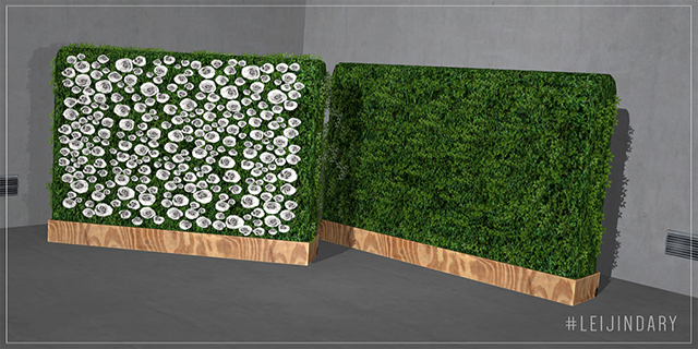 LEIJIN__Hedge Wall.jpg