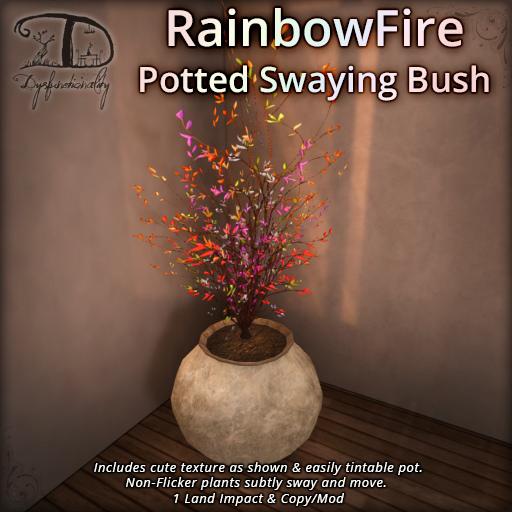 31032018 Rainbow Fire Bush DDD caspertech.jpg