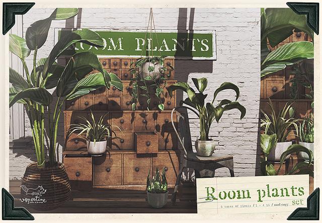 vespertine room plants c88.jpg