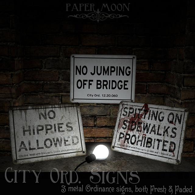 11042018 City Ord Signs Paper Moon.jpg