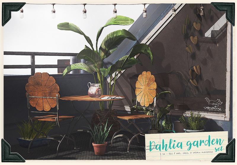 vespertine - dahlia garden set - bloom.jpg