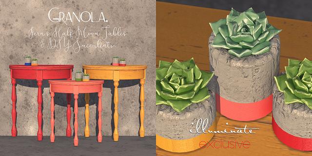 Granola. - Fern's half moon tables & DIY succulents - Illuminate.jpg