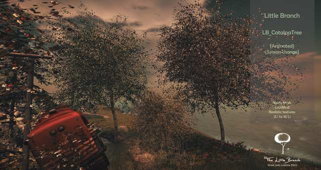 18042018 Little Branch Illuminate.jpg