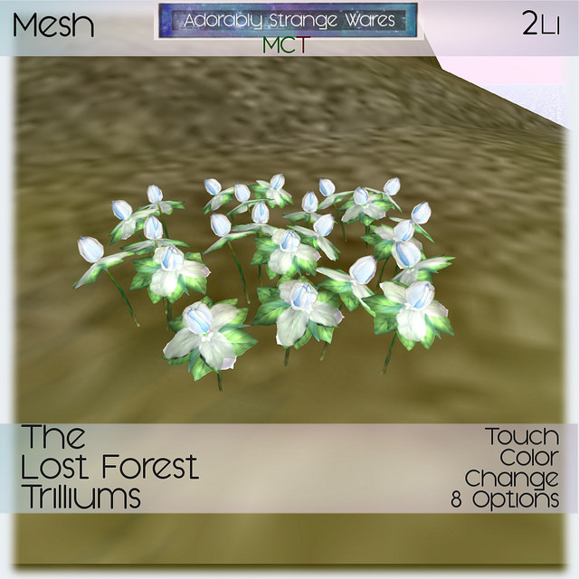 ASW - The Lost Forest - Trilliums - Fantasy Faire.jpg