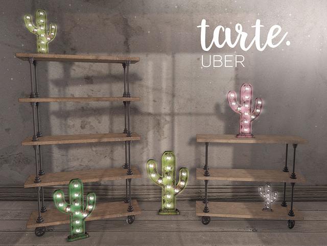 Tarte. - Industrial Shelves Cactus Marquee - UBER.jpg