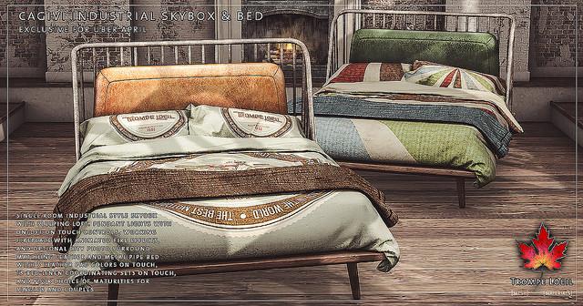 Trompe Loil - Cagivi texture change bed - UBER.jpg