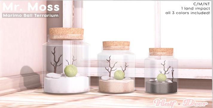 Half-Deer - Moss Terrarium - FLF.jpg