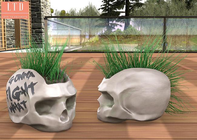 Consignment - Skull Pots - Illuminate Shelf.jpg