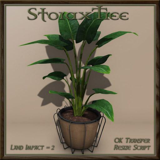 07052018 Storax Tree Vagabond - Swank 002.jpg