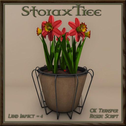 07052018 Storax Tree Vagabond - Swank 003.jpg