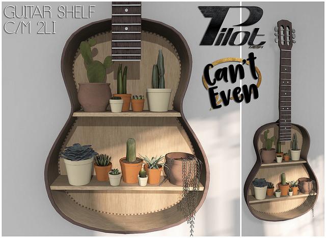 Pilot & Can't Even - Guitar Shelf - C88.jpg