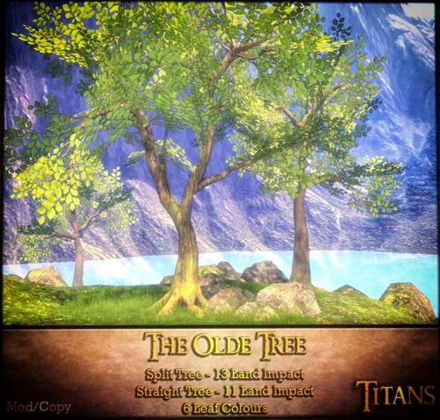The-Olde-Tree.jpg