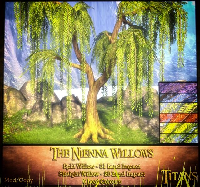 The-Nienna-Willows.jpg