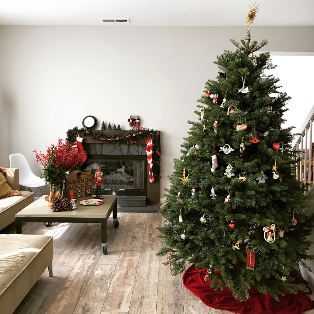We are so thankful for our home this year. After the two months of homeless lives, we were able to back in our house over Thanksgiving week!  Now we are preparing our hearts for receiving the true meaning of Christmas. Thank you so much for all of your prayers and our family friend who provided a place for us to stay.