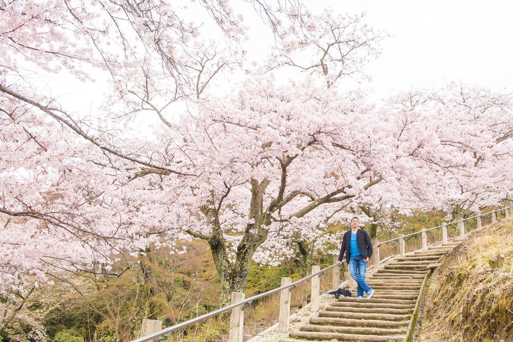 photoshoot tour in Osaka, Kyoto and Nara by photoguider-japan-109.jpg