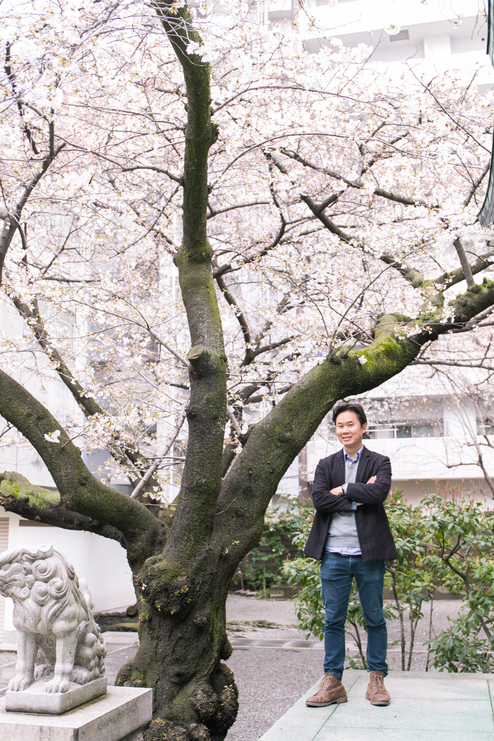 Photography tour in Osaka with cherry blossoms