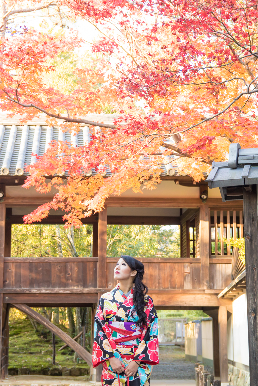 photoshoot and guide tour in Kyoto with photographer