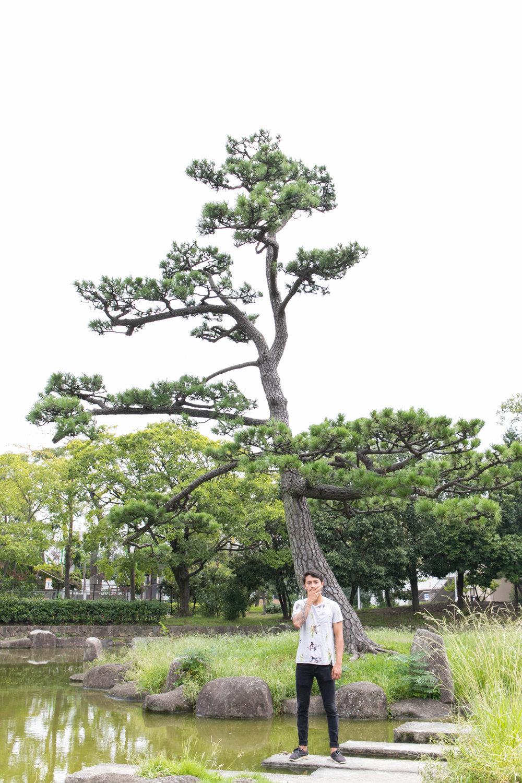 photo walk tour in osaka and tokyo