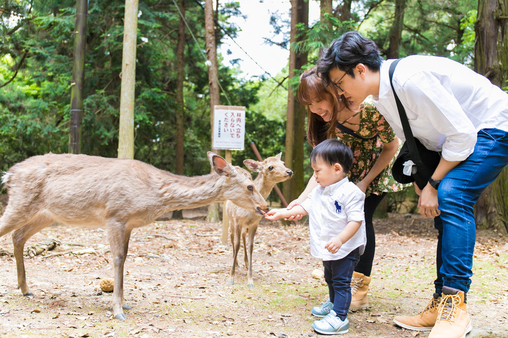 Family Photoshoot tour in Nara, Japan