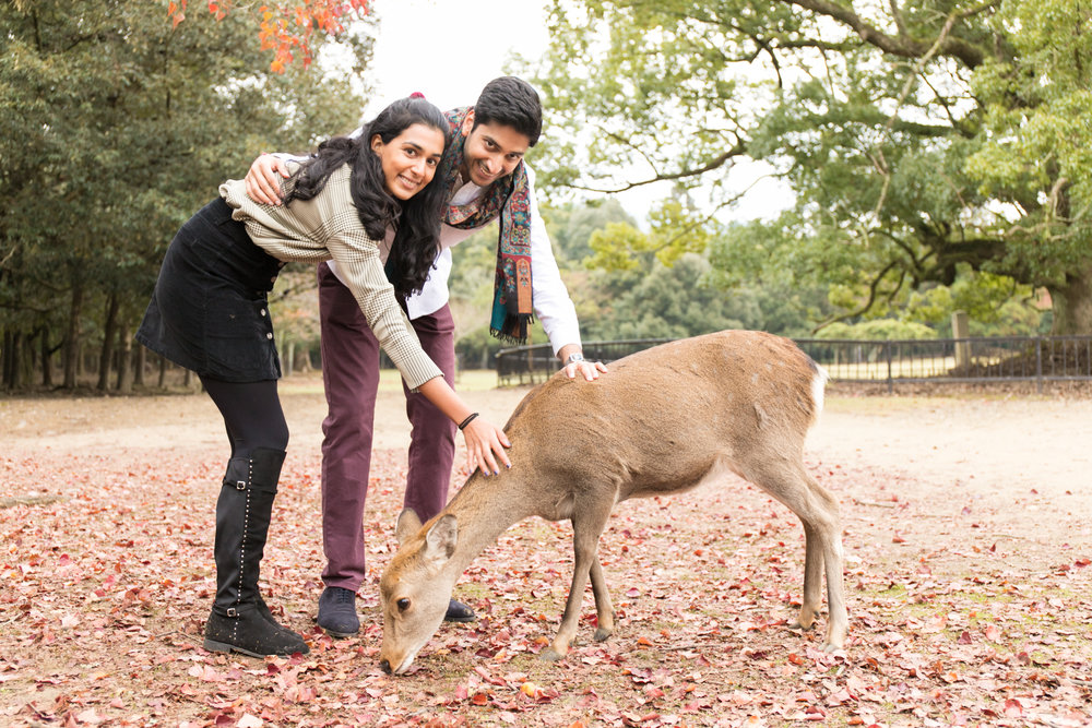 Surprised propose photoshooting in Nara Japan