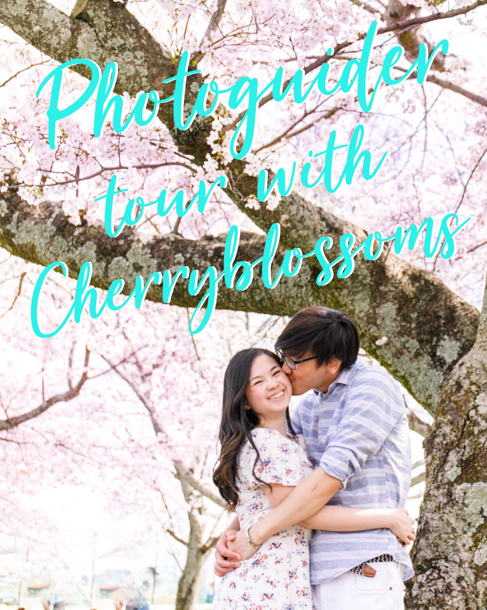 Photoshoot with cherry blossoms in Kyoto, Osaka and Tokyo