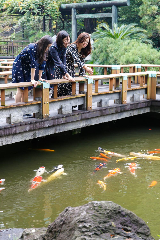 Phototour at Yoyogi park and Harajuku in Tokyo