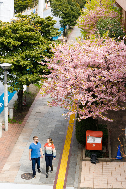 Photoshooting tour in Odaiba team lab Tokyo, Osaka and Kyoto
