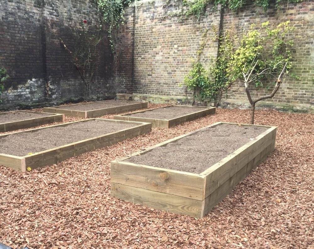 Old Rectory Garden  allotments at Old Rectory Gardens:simple raised beds including one for disabled access, a storage shed and a selection of fruit trees. a simple, effective and highly functional allotment garden.