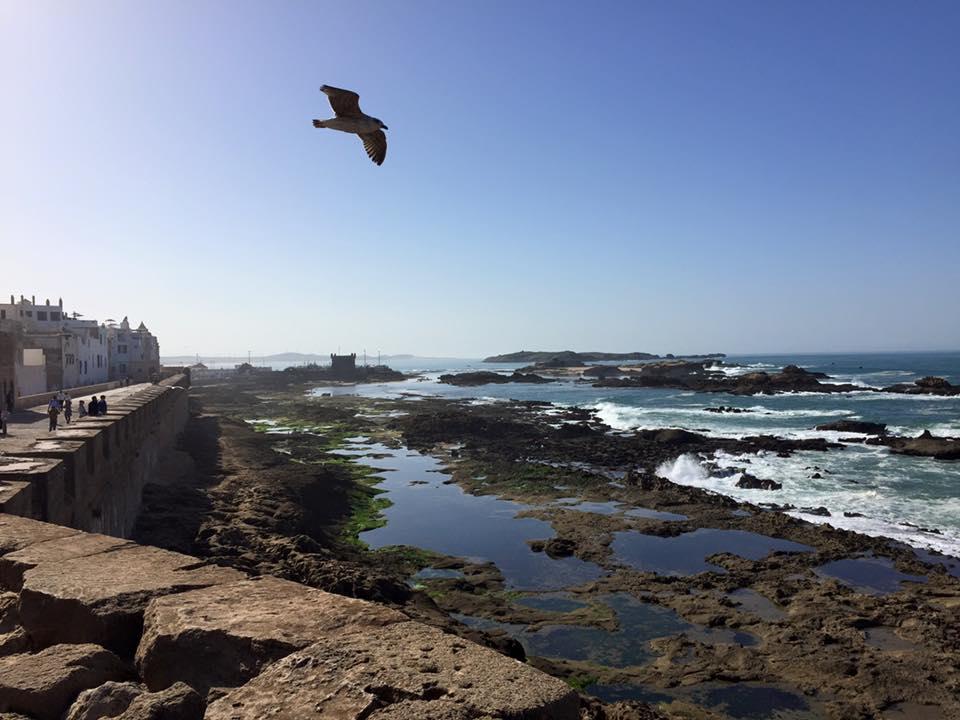 Essaouira Town View.jpg