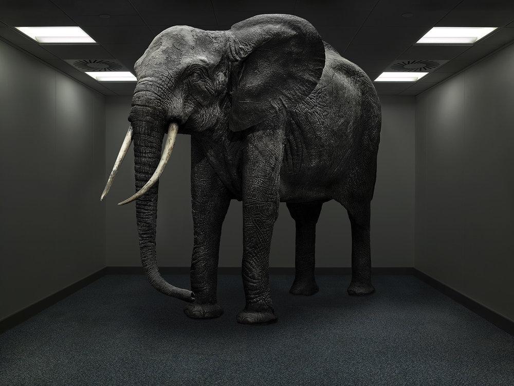 elephant-room.jpg