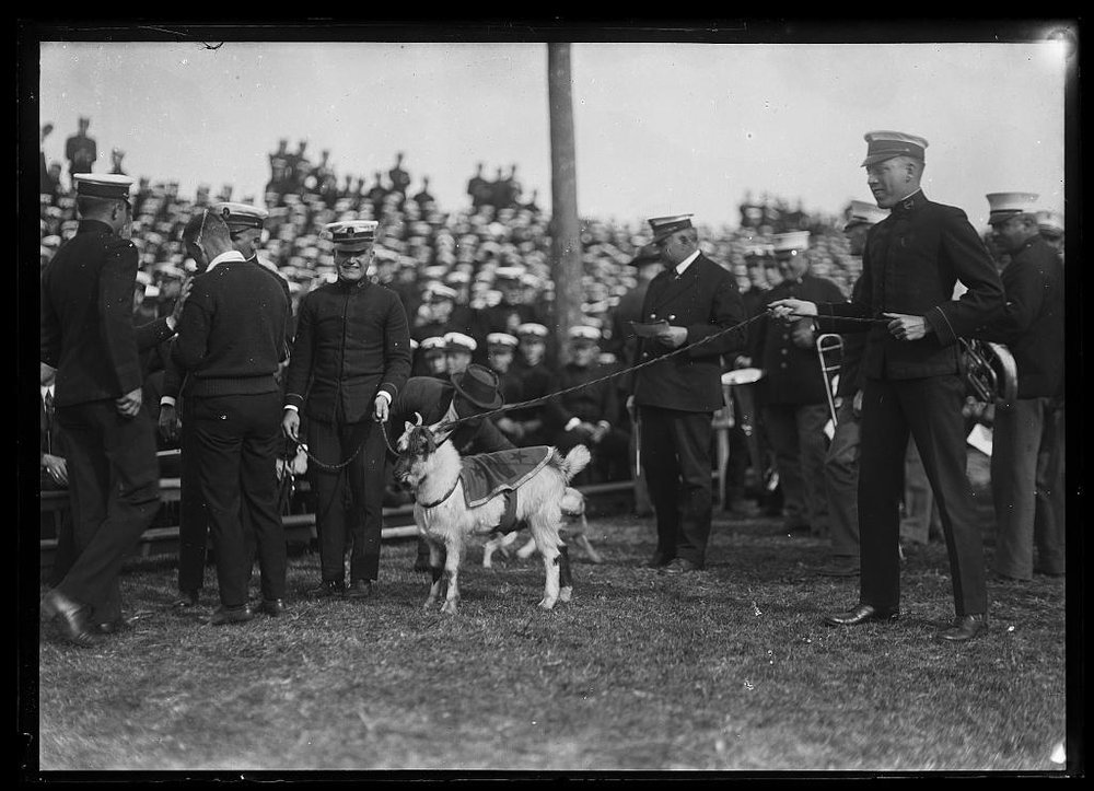 An early Bill, circa 1921. Library of Congress, Prints & Photographs Division, photograph by Harris & Ewing, LC-DIG-hec-31508