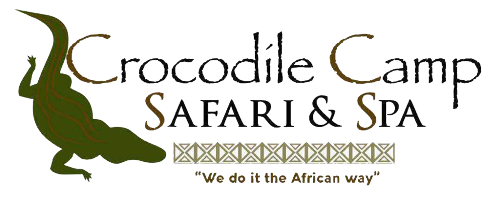 crocodile_camp_logo.png