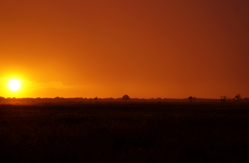 Sunset in Hwange National Park