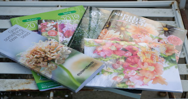 seed catalogues.jpg