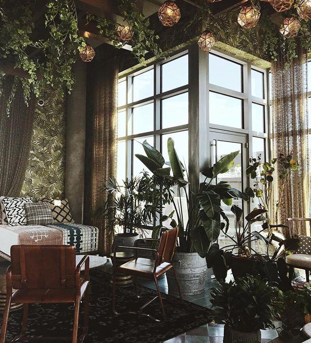 You don't need to leave the city to escape the city 📷Plant Jungle at @theapollodc . . . . #apollodc #plants #jungle #washington #dc #urbanjungle #escape #creativedc