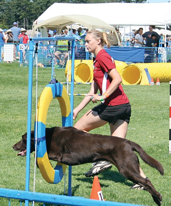 INSTRUCTORS   We are a small dedicated team of agility enthusiasts with extensive training and experience.   Meet the team.