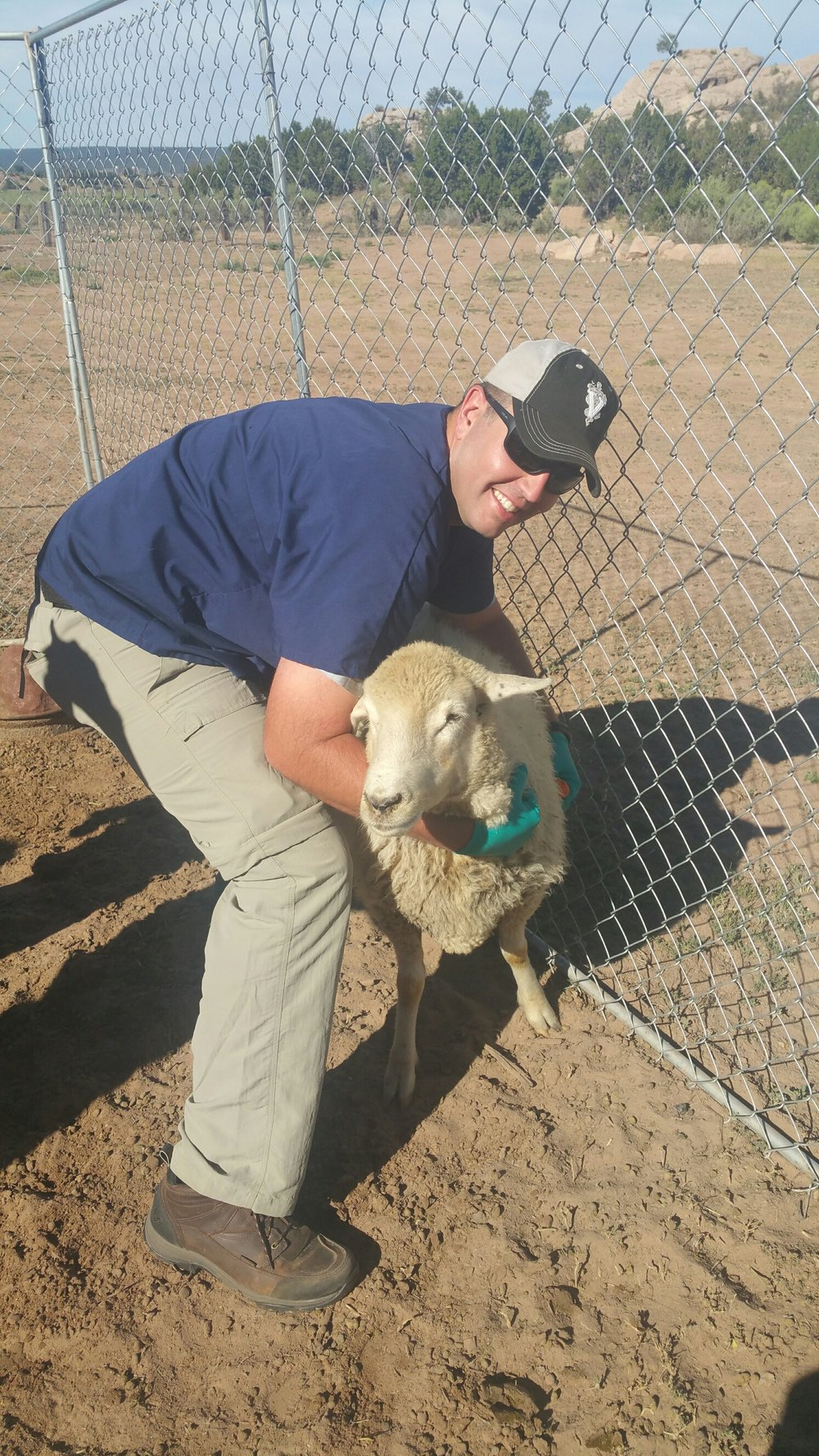Brad CVM with Sheep.JPG