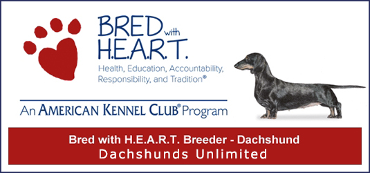 DU-AKC Bred With HEART-Dachshund -Member.png