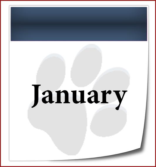 DU-Calendar Page-01-JAN.png