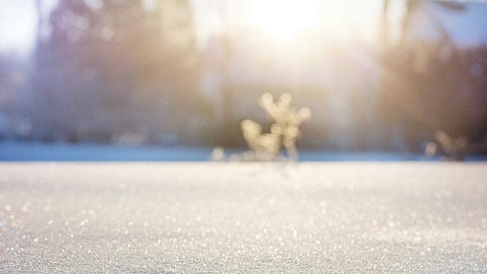 article_winter.jpg
