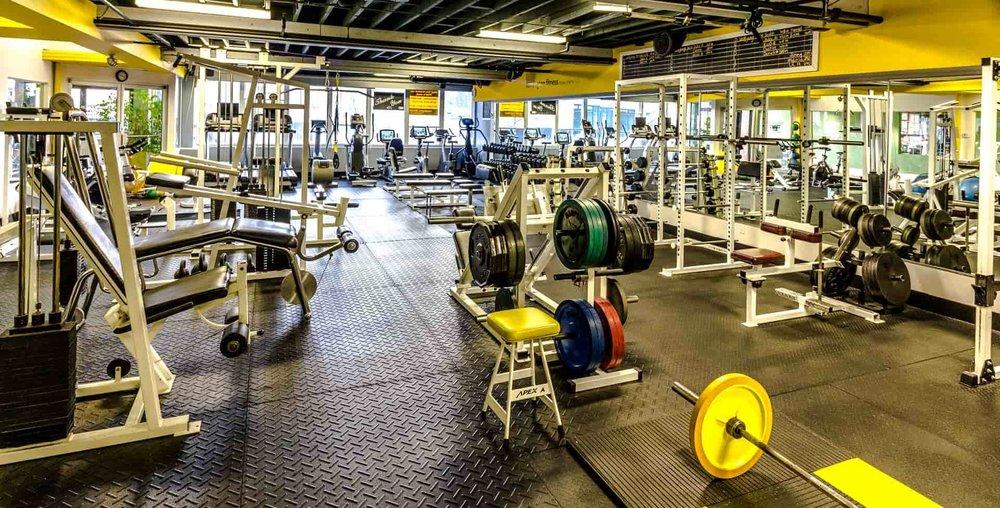 kensignton gym equipment-min.jpg