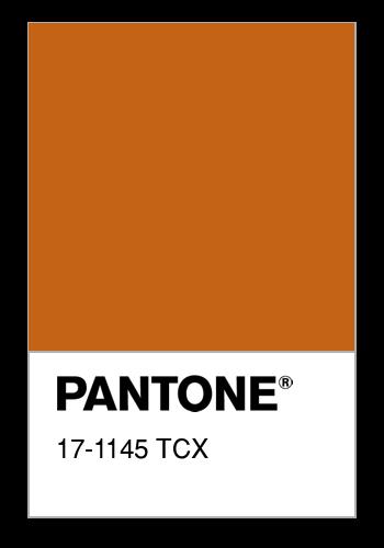 pantone3.png