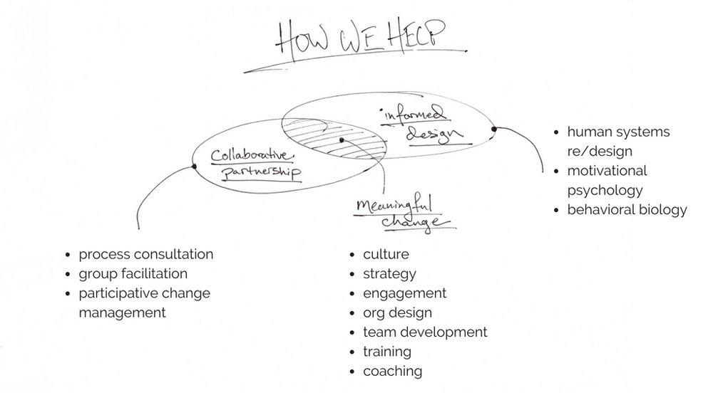 web how we help 3.jpg
