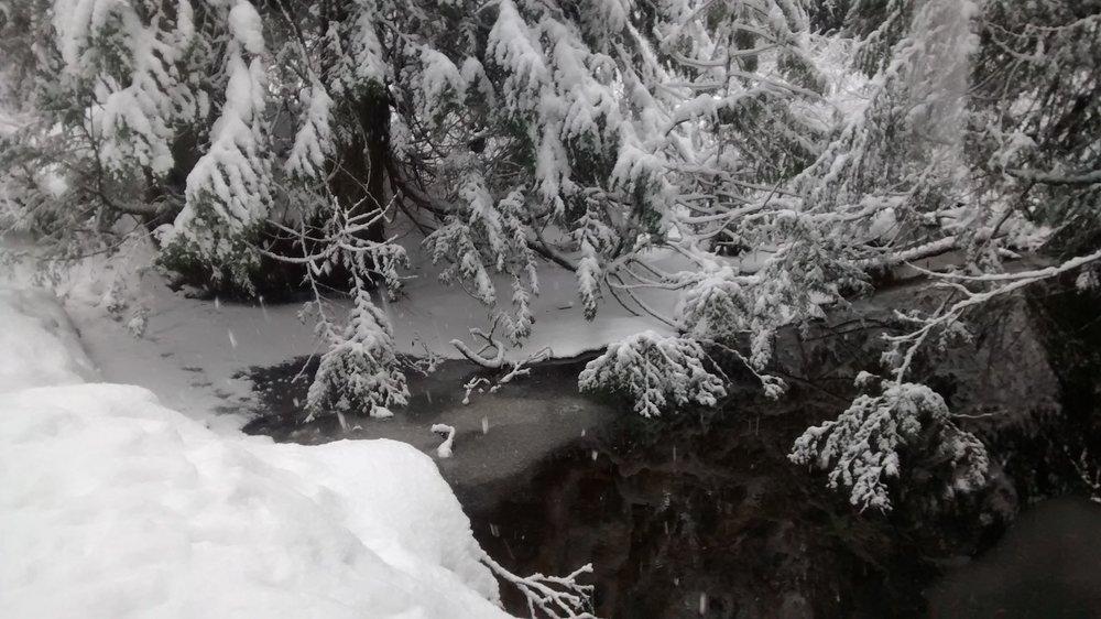 winterwonderland2016_iv.jpg