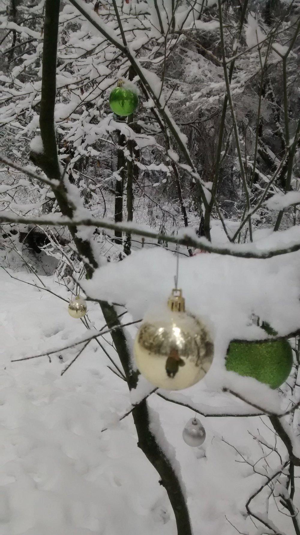 winterwonderland2016_vi.jpg