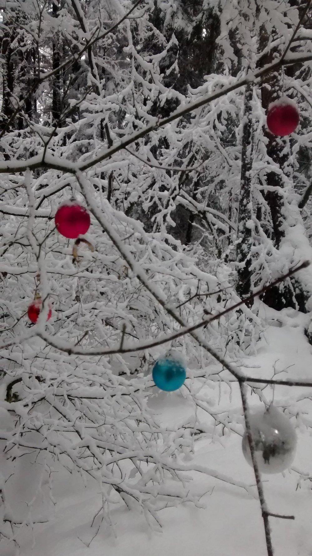winterwonderland2016_vii.jpg