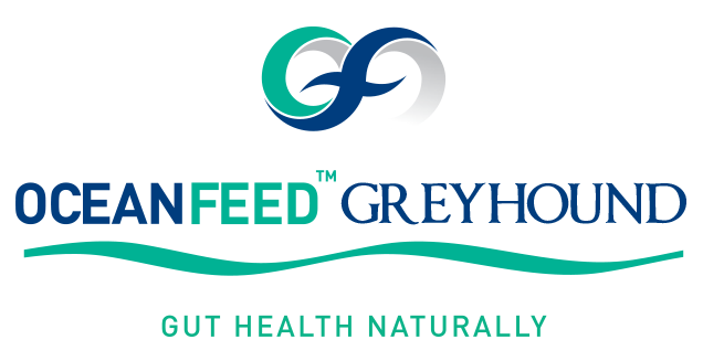 OceanFeed-ProductLogos-GutHealth_0000_OceanFeedGreyhound_ID-GH.png