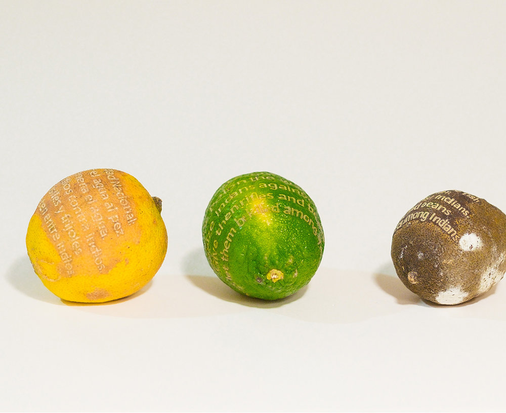 Seguridad Nacional/ National Security: poetry-engraved limes; in collaboration with Hugo Gordillo