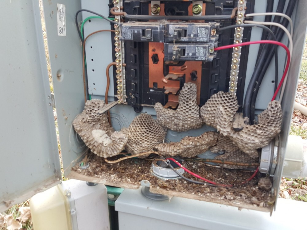 Electrical Hazard!! — Fuse Electric LLC | Electrician Cabot Ar on