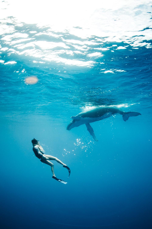 Tahiti_HBGOODIE2018 (14 of 82).jpg